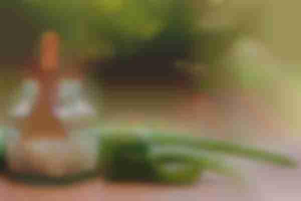 Aloe vera for melasma